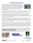 December - Pleasant Oaks Gem and Mineral Club - Page 5