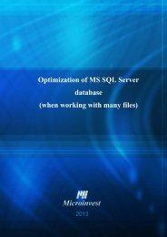 Optimization of MS SQL Server database - Microinvest