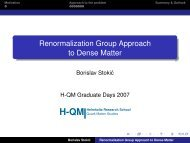 Renormalization Group Approach to Dense Matter