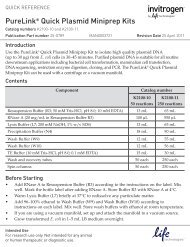 PureLink® Quick Plasmid Miniprep Kits - Invitrogen