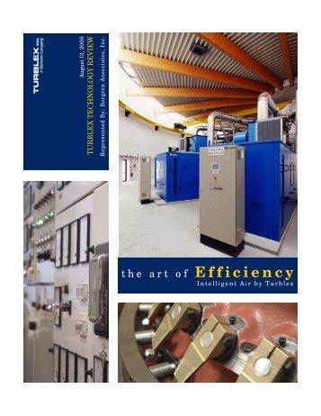 the art of EFFICIENCY - The Bergren Associates