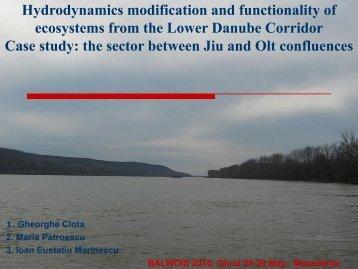 the sector between Jiu and - Balwois