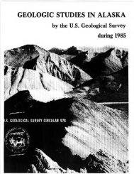 GEOLOGIC STUDIES IN ALASKA by the US Geological Survey ...