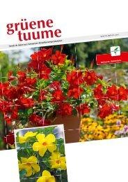 Der Lifestyle-Garten macht auch im Beet- und ... - Toni Suter