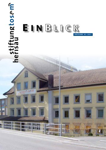 EinBlick 1/11 - Stiftung Tosam