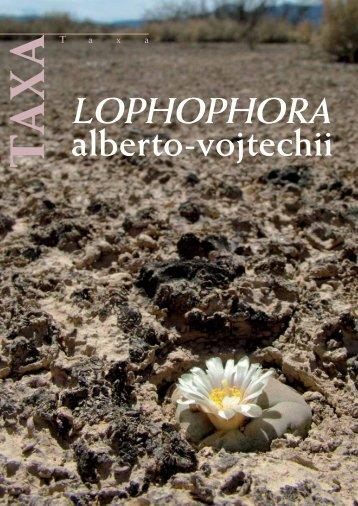 alberto-vojtechii - Lophophora.info