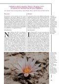 alberto-vojtechii - Lophophora.info - Page 2