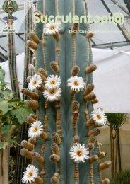 Numéro 2, juillet 2012 - Au Cactus Francophone