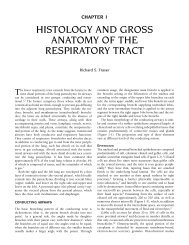 Ch01: Histology and Gross Anatomy of the Respiratory Tract