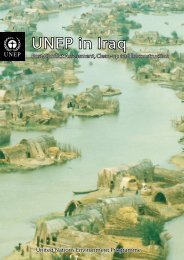 UNEP in Iraq: Post-Conflict Assessment, Clean-up and Reconstruction