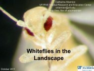 Whitefly in the Landscape - Tropical Research and Education ...