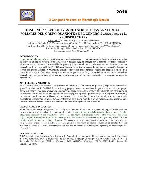 Tendencias Evolutivas De Estructuras Anatomico Foliares Del