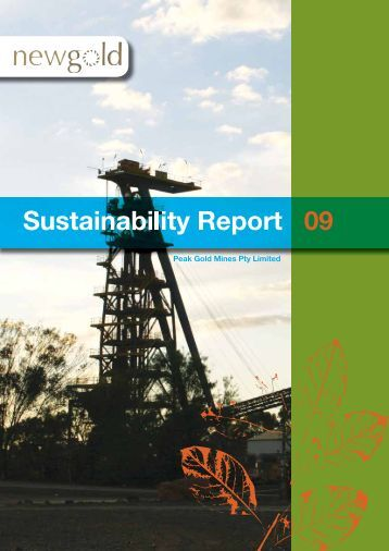 2009 Sustainability Report - New Gold