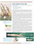 Habitat - MCCYear11Biology - Page 3