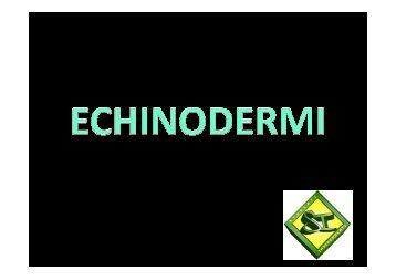 18 ECHINODERMI - Studenti-Indipendenti