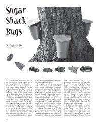 Sugar Shack Bugs - Chebucto Community Net
