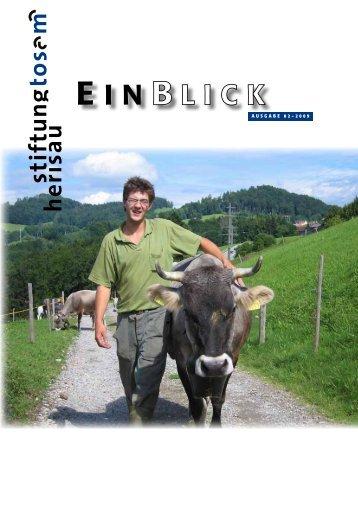 Einblick 02/2009 - Stiftung Tosam