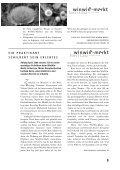 Einblick 02/2009 - Stiftung Tosam - Seite 5