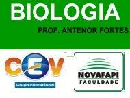 PROF. ANTENOR FORTES - Grupo CEV