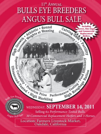 BULLS EYE BREEDERS ANGUS BULL SALE - Angus Journal