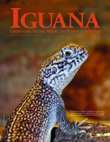 Iguana b&w text - International Reptile Conservation Foundation