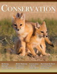 Spring/Summer 2008 - Alberta Conservation Association