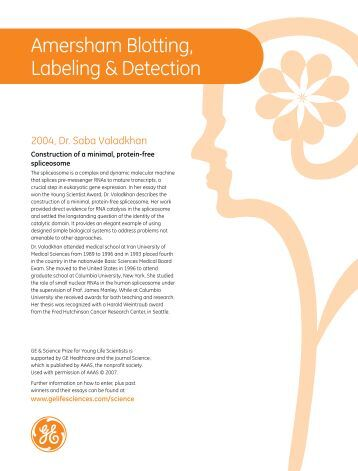 Amersham Ecl Select Western Blotting Detection Reagent