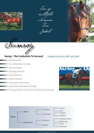 SUNRAY(NZ) - Willow Glen Stud