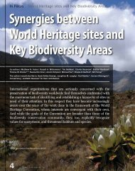 Synergies between World Heritage sites and Key ... - NatureServe