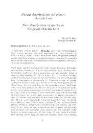 Orquideología 15 - Epidendra