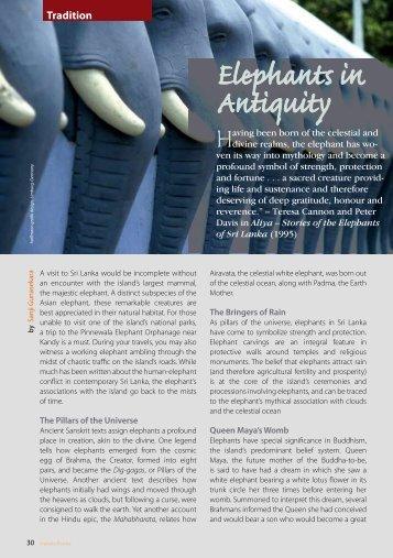 Elephants in Antiquity - Serendipity365