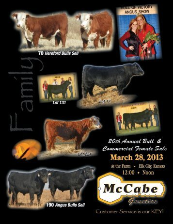 McCabe Fall Angus Bulls - LivestockDirect.net