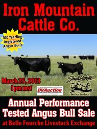 download sale catalog - Iron Mountain Cattle Co.