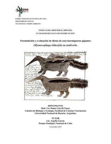 Formulación y evaluación de dietas de osos hormigueros gigantes ...
