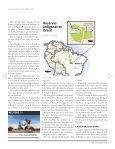 Brasil hace justicia con tierras indígenas, aunque a un alto costo - Page 3