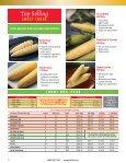 Sweet Corn - Page 2