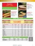 Sweet Corn - Page 3
