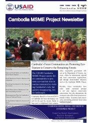 USAID Cambodia MSME Newsletter 12 - June 2012.pdf