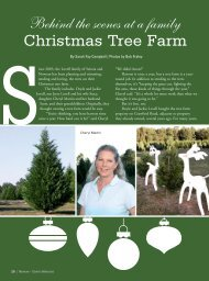 Behind the Scenes of a Family Christmas Tree ... - Lovell Tree Farm