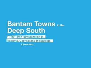 Tiny Town - Georgia Planning Association