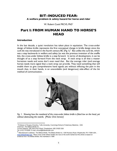BIT-INDUCED FEAR: Part I: FROM HUMAN     - The Bitless Bridle