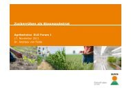 Zuckerrüben als Biogassubstrat g Agritechnica DLG Forum 1