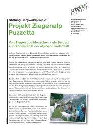 Projekt Ziegenalp Puzzetta - Bergwaldprojekt