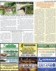 Tentativa de homicídio em fazenda de Conselheiro Pena - CP Notícia - Page 6