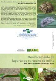 Monitoramento da lagarta-do-cartucho do milho - Ainfo - Embrapa