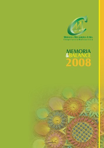 Memoria 2008 - Medalla Milagrosa
