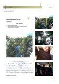 CERVINHA - Escola EB 2,3 de Cerva - Page 4