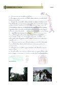 CERVINHA - Escola EB 2,3 de Cerva - Page 5