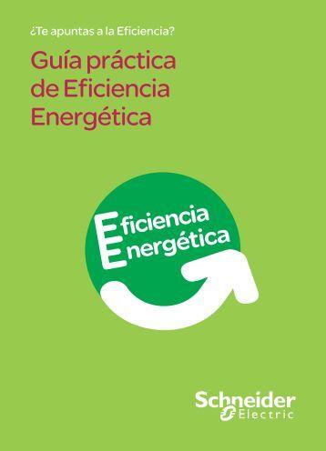 Guía práctica de Eficiencia Energética