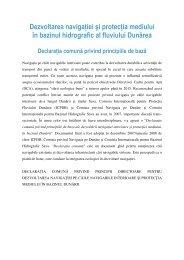 RO - Joint Statement.Translation_ApeleRo01-2010.final - ICPDR